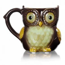 Funny Owl Ceramic Coffee Mug Tea Mugs,Cute Owl Morning Coffee Cup 12 oz