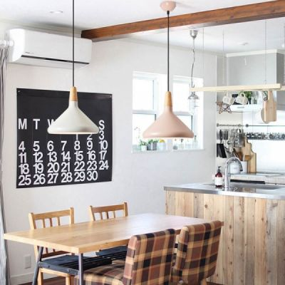 Restaurant Chandelier - Nordic Style and Modern Chandelier, Iron Chandelier, Lighting, LOFT Light, Single Head Lamp, Contracted Lamp
